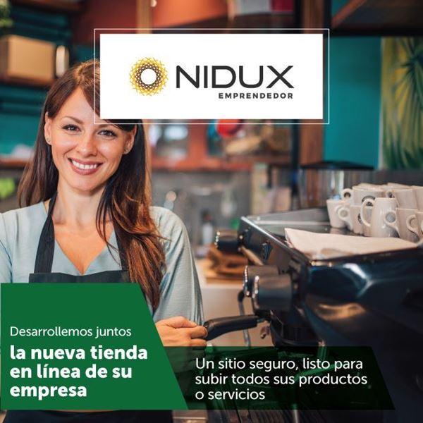 Foto de NIDUX emprendedor